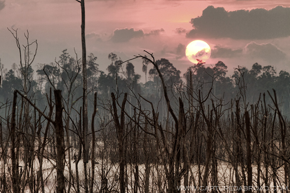 "Mangroves seen during the ""Thakhek loop"" at sunset"